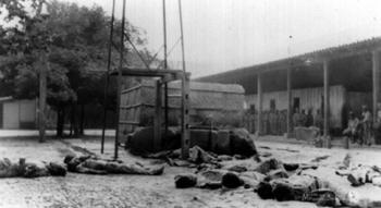 Víctimas indígenas en el año 32